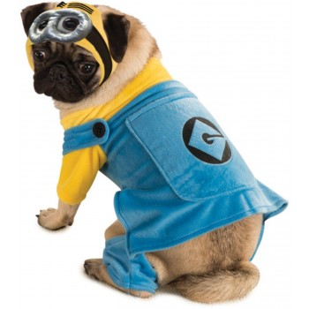 Despicable Me Pet Costume.jpg