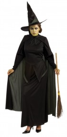 The Wizard of Oz Wicked Witch Adult Women's Costume_thumb.jpg
