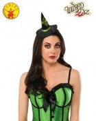 The Wizard of Oz Wicked Witch Mini Adult Hat_thumb.jpg