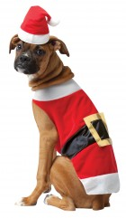 Santa Pet Costume_thumb.jpg
