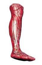 Skinned Alive Right Leg Latex Prop Haunted House Decoration_thumb.jpg