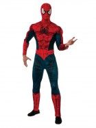 Spider-Man Adult Costume_thumb.jpg