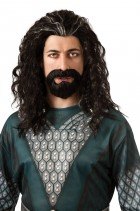 The Hobbit - Thorin Wig and Beard Set_thumb.jpg