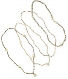 Shell Lei Necklace Adult Costume Accessory_thumb.jpg
