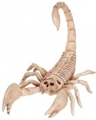 Skeleton Scorpion Prop_thumb.jpg