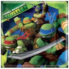 Teenage Mutant Ninja Turtles Paper Dinner Plates 22.9cm Pack of 8_thumb.jpg