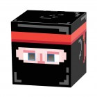 Pixel Ninja 8-Bit Box Head_thumb.jpg