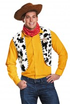 Toy Story Woody Deluxe Adult Costume Kit_thumb.jpg