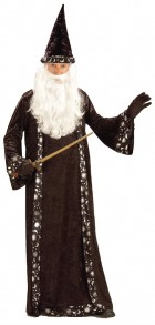 Wizard Hat And Robe Adult Costume One Size_thumb.jpg