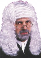 Adult Colonial Settler Governor Judge Wig White _thumb.jpg
