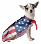 USA Flag Pet Costume_thumb.jpg