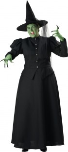 Wicked Witch Adult Plus Costume_thumb.jpg