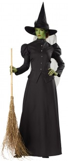 Witch Classic Deluxe Adult Plus Costume_thumb.jpg