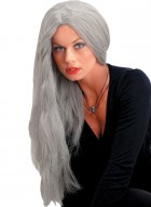 24in Witch Long Straight Women's Costume Grey Wig_thumb.jpg