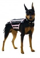 Doginatrix Dog Pet Costume_thumb.jpg