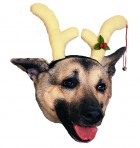 Pet Dog Reindeer Antlers Christmas Cute Costume_thumb.jpg