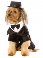 Dapper Dog Pet Costume_thumb.jpg