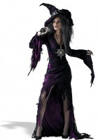 Sorceress  Adult Women's Costume_thumb.jpg
