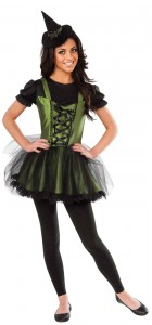 Wizard Of Oz Wicked Witch of the West Young Adult Women's Costume