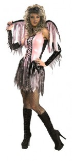 Spider Web Fairy Secret Wishes Adult Costume