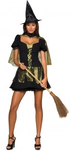Wizard of Oz Sexy Wicked Witch of the West Adult Women's Costume